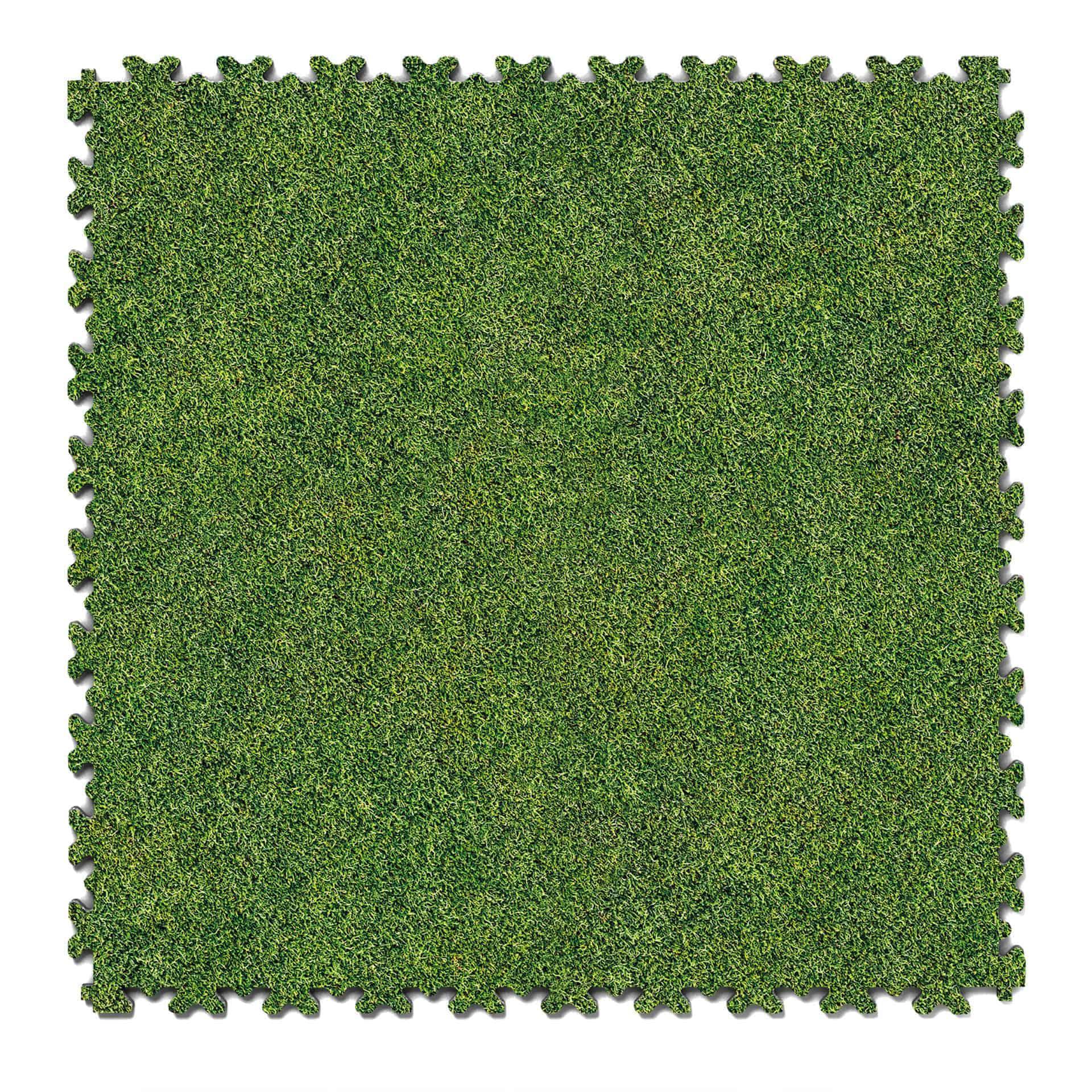 Impression Grass